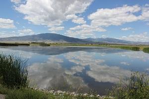 Monte-Vista-wildlife-area
