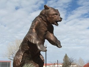 Adams-State-College-Grizzly