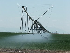 Center-Sprinkler-Pivot